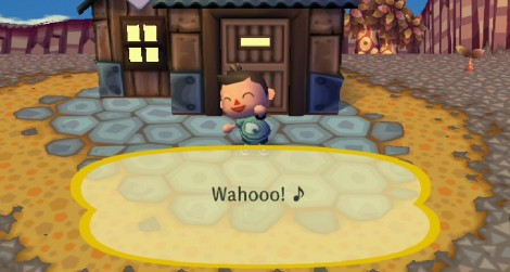 animal_crossing_wii_03