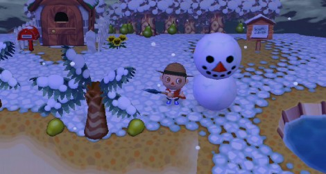 animal_crossing_wii_09